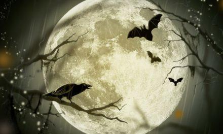 Kdy je letos Halloween a jak a proč ho slavit?