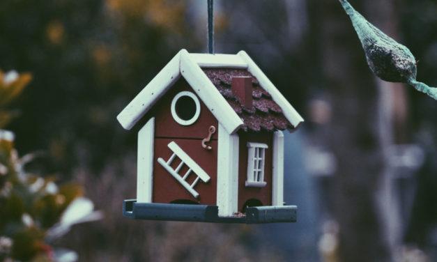 Zbývá pár posledních dnů na daňové přiznání k dani z nemovitosti