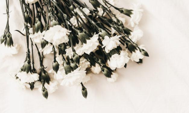 Co je to státní pohřeb